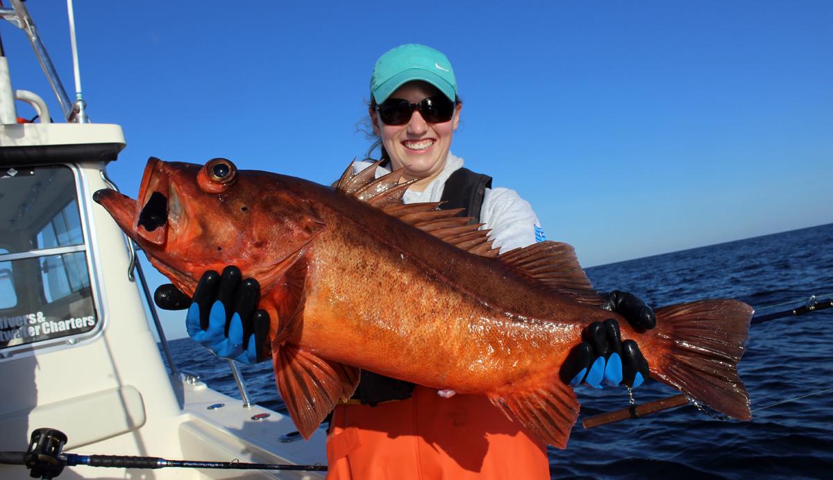Westport Boccaccio Rockfish