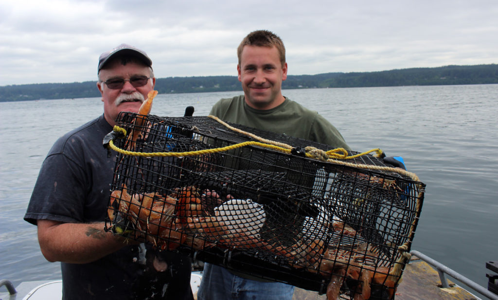 Hood Canal Spot Shrimp Report May 21