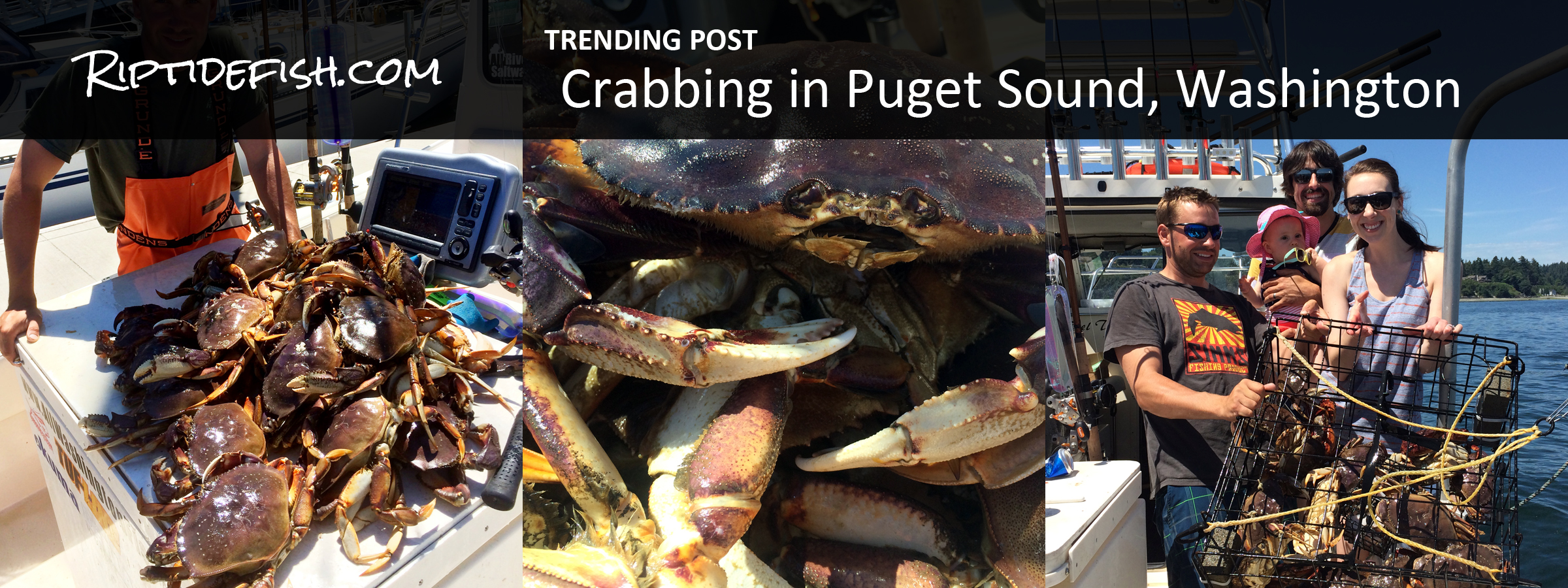 Crabbing in Puget Sound Washington