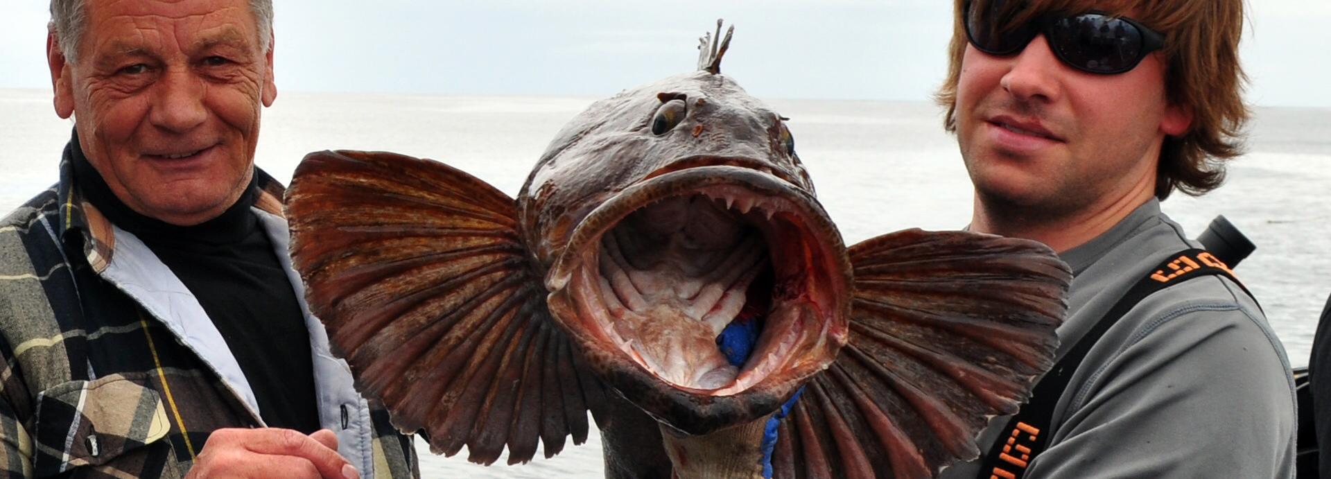 Lingcod Fishing
