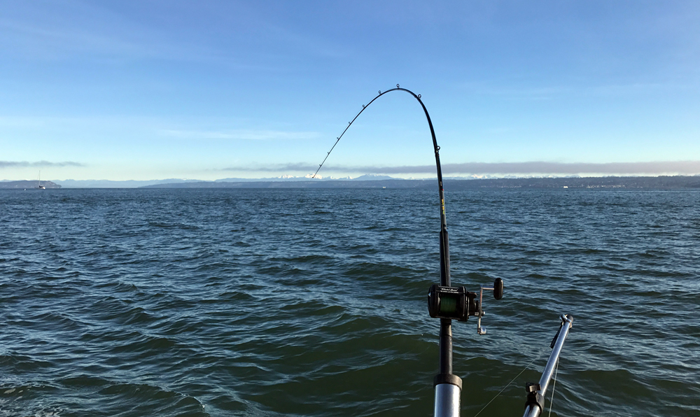 A beautiful winter day on Puget Sound.
