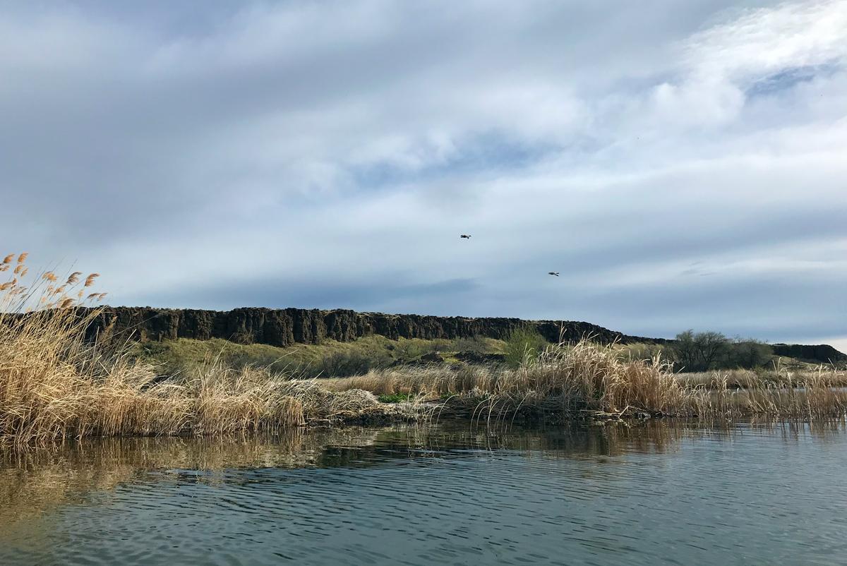 Lake Lenice Washington