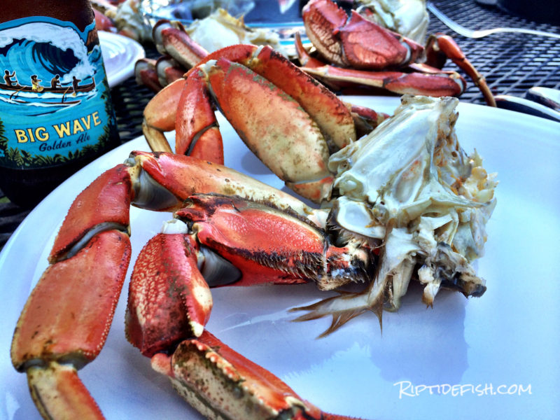 Dungeness Crab Recipes