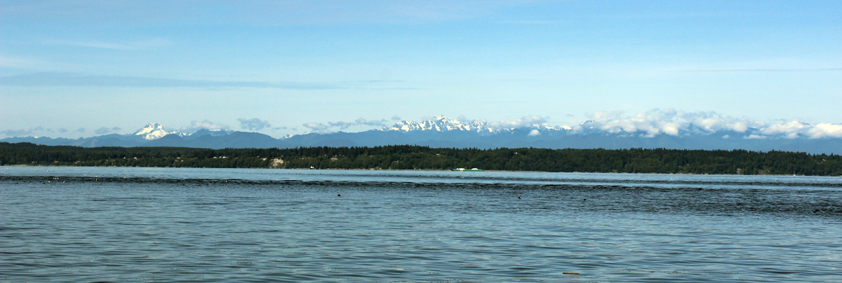 View of the Olympic Mountains.