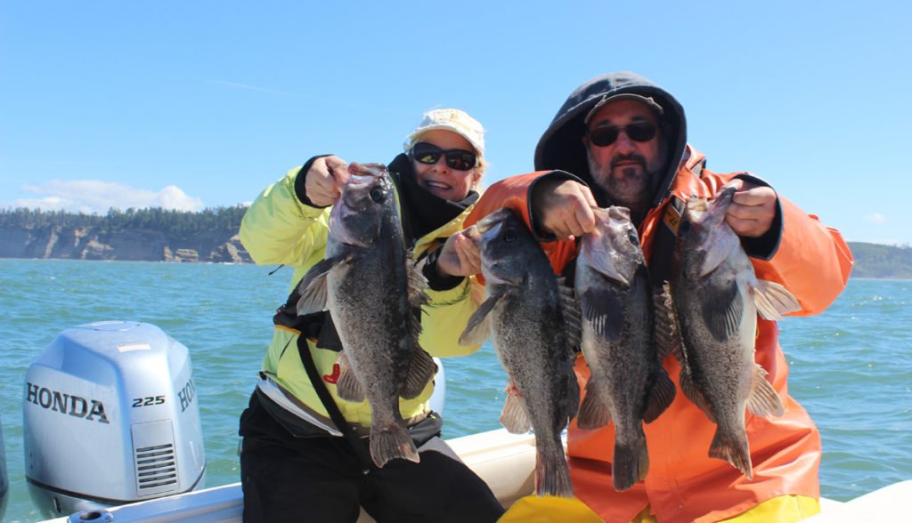 Westport Rockfish Fishing