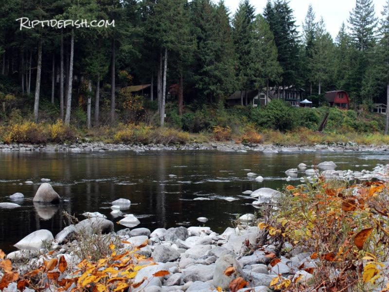 Best Fishing Spots Skykomish River