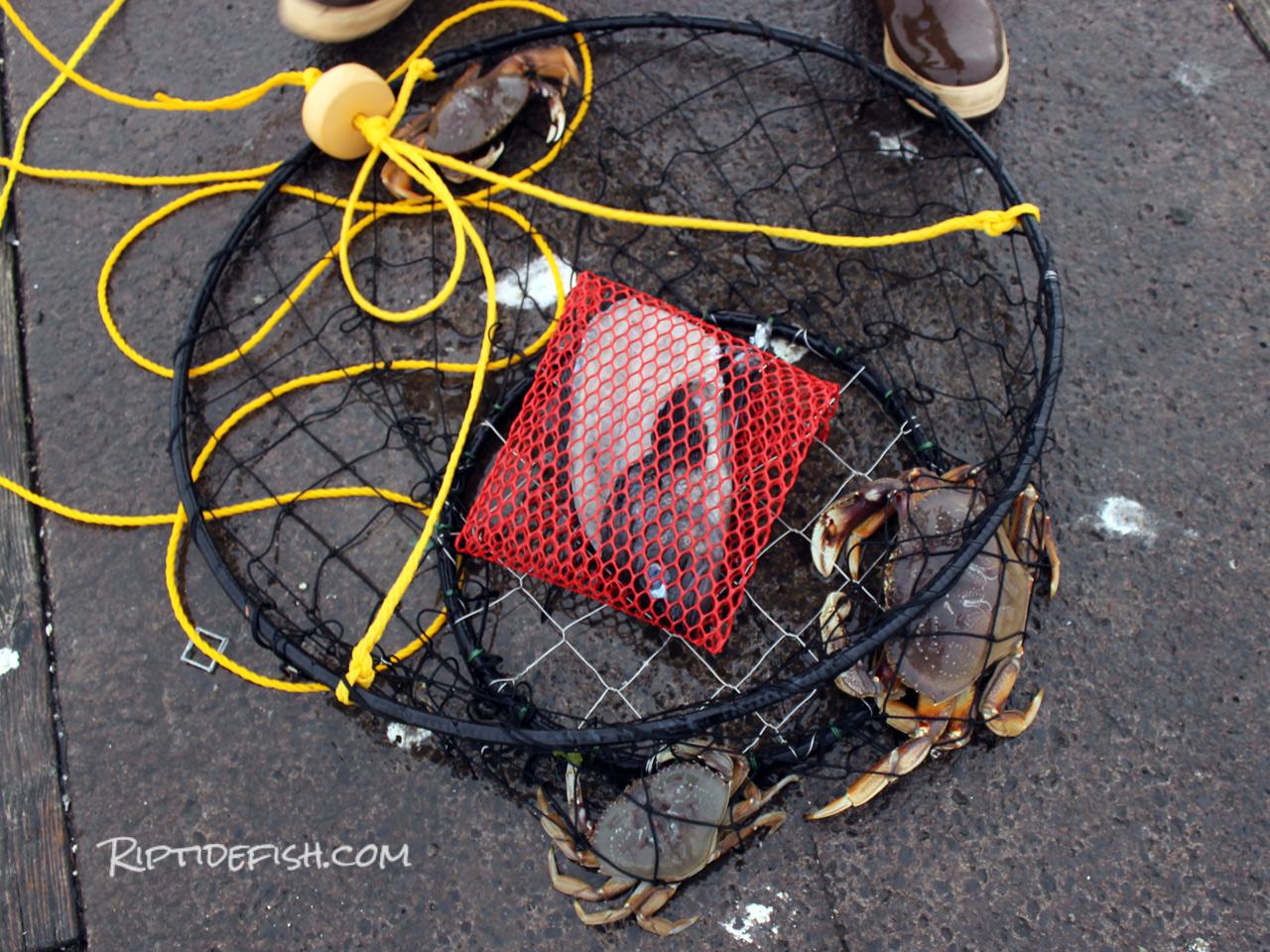 Crabbing ring