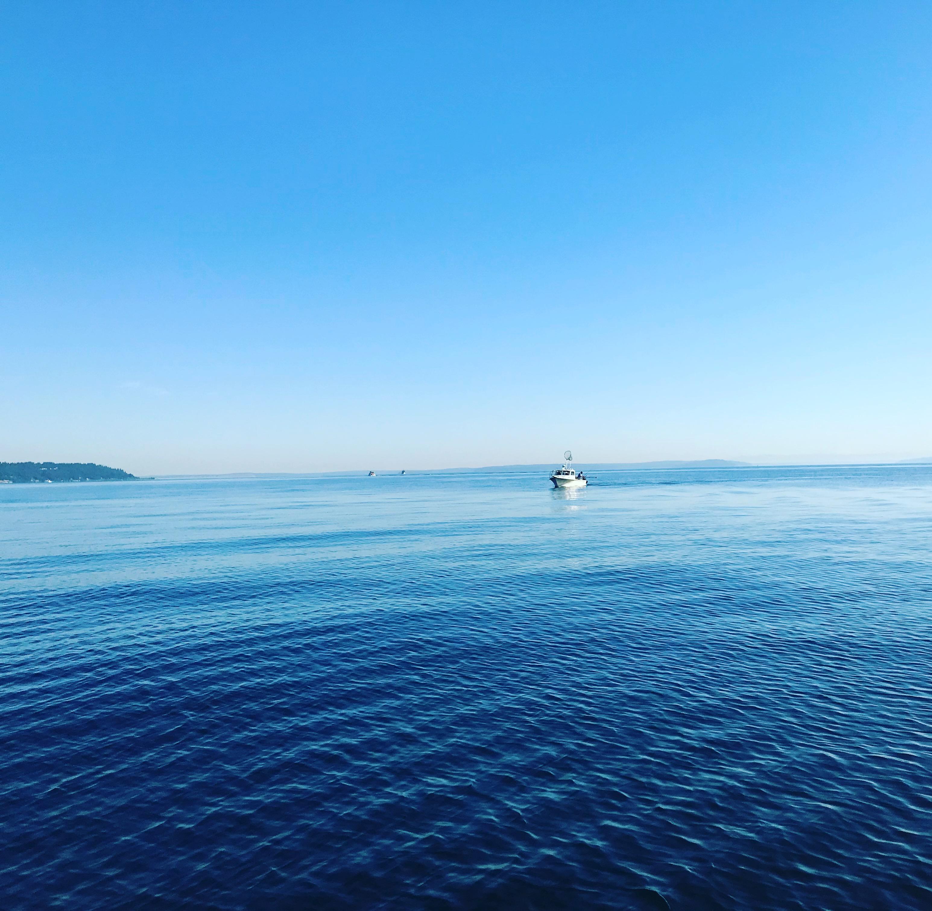 Seattle Salmon Fishing Report