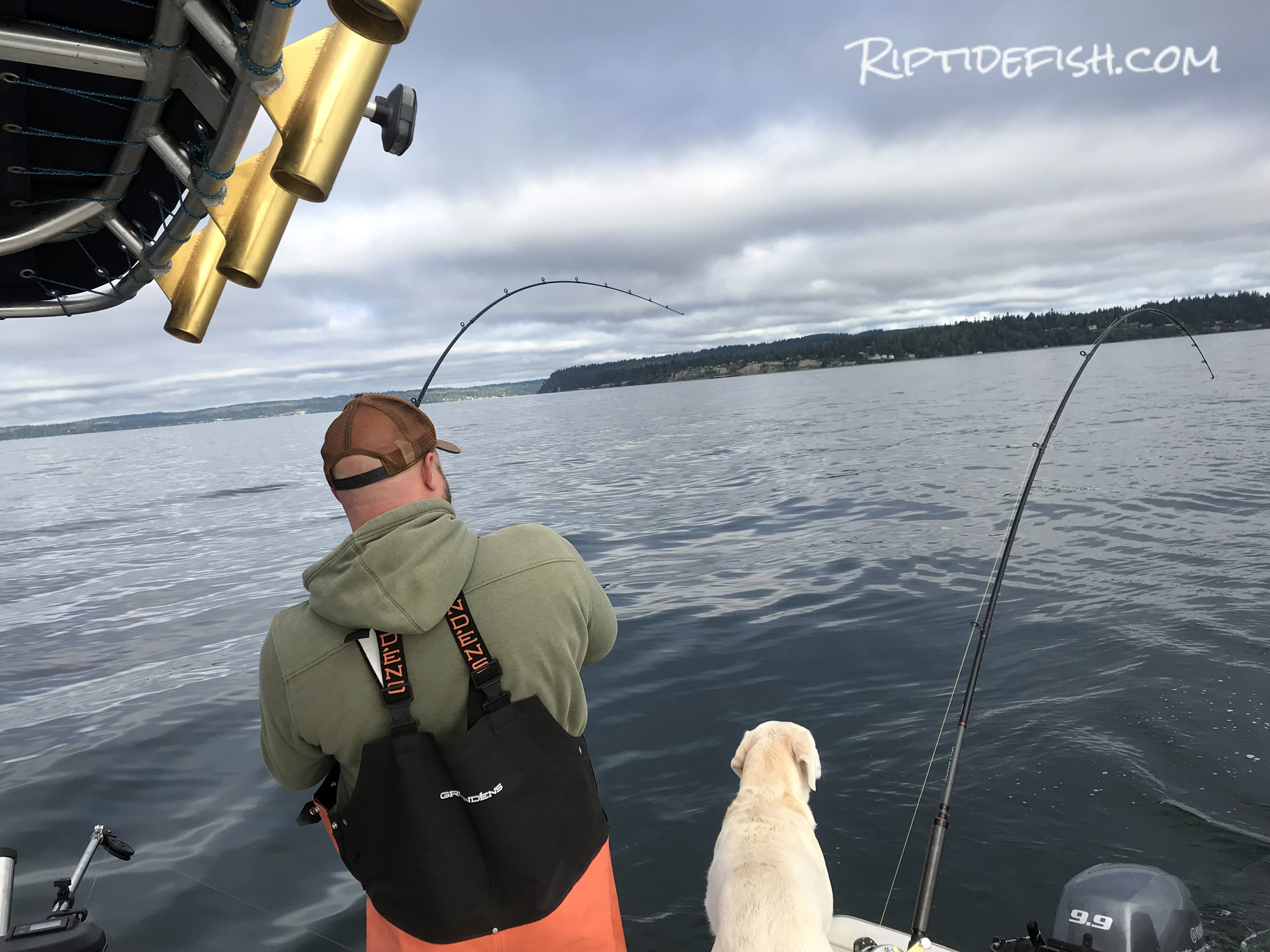 Seattle Coho Salmon Fishing