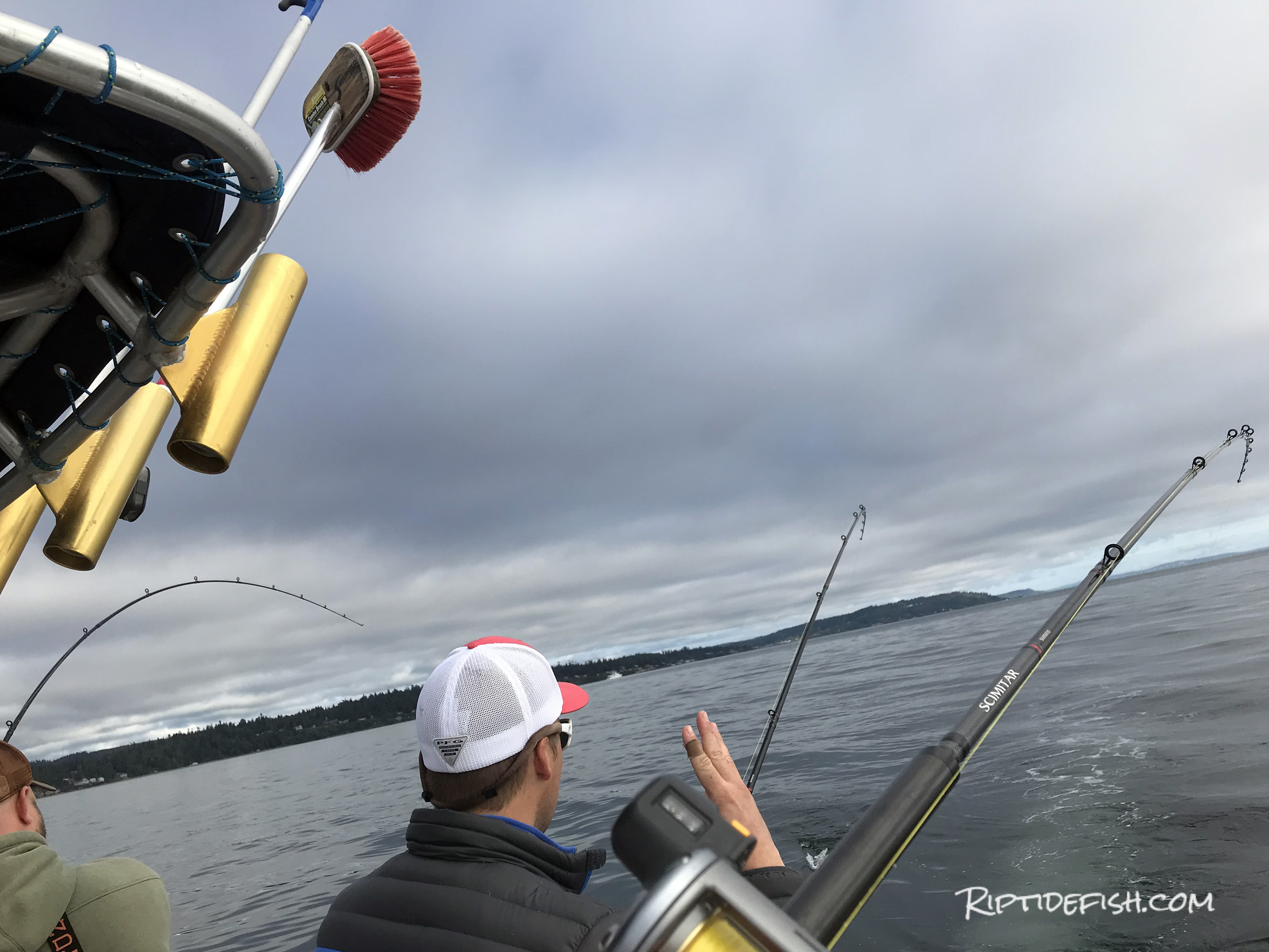 Seattle Salmon Fishing Report