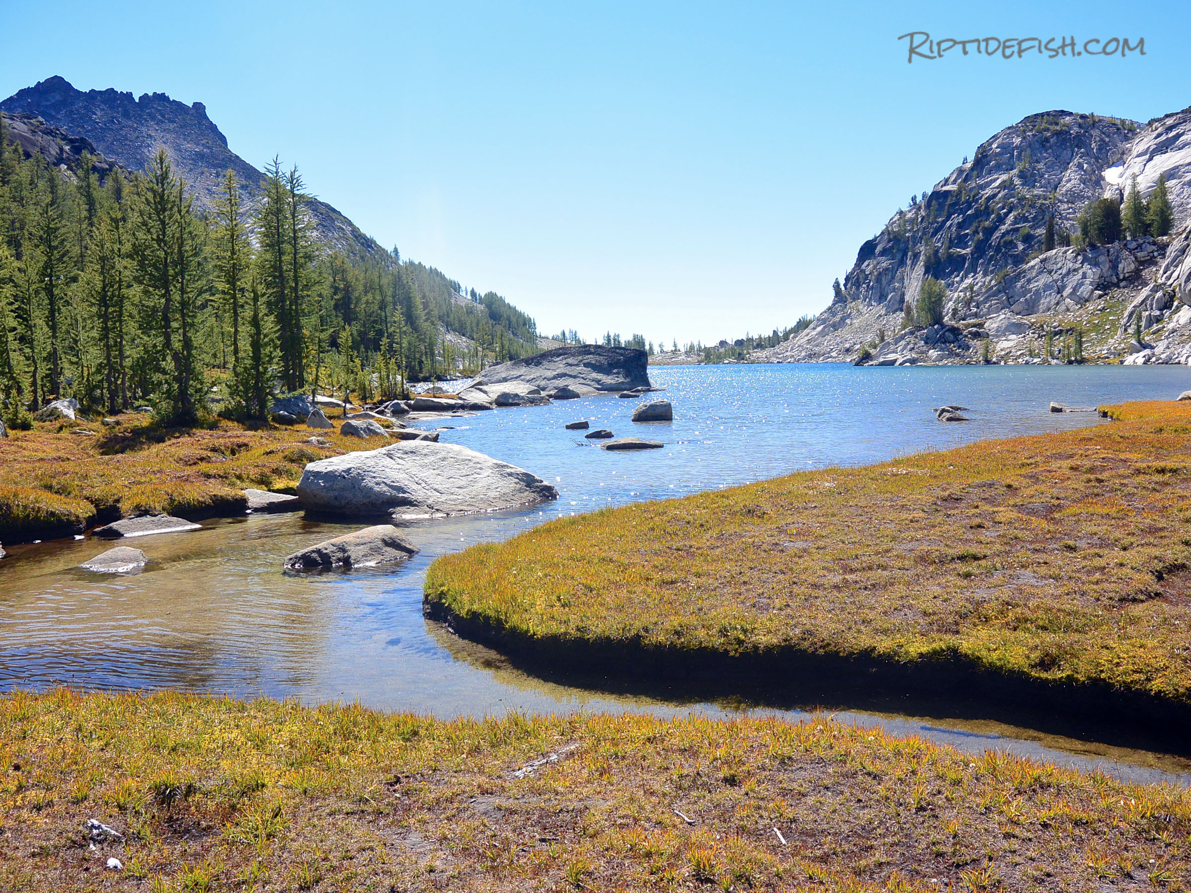 Hiking For Mountain Trout Washington