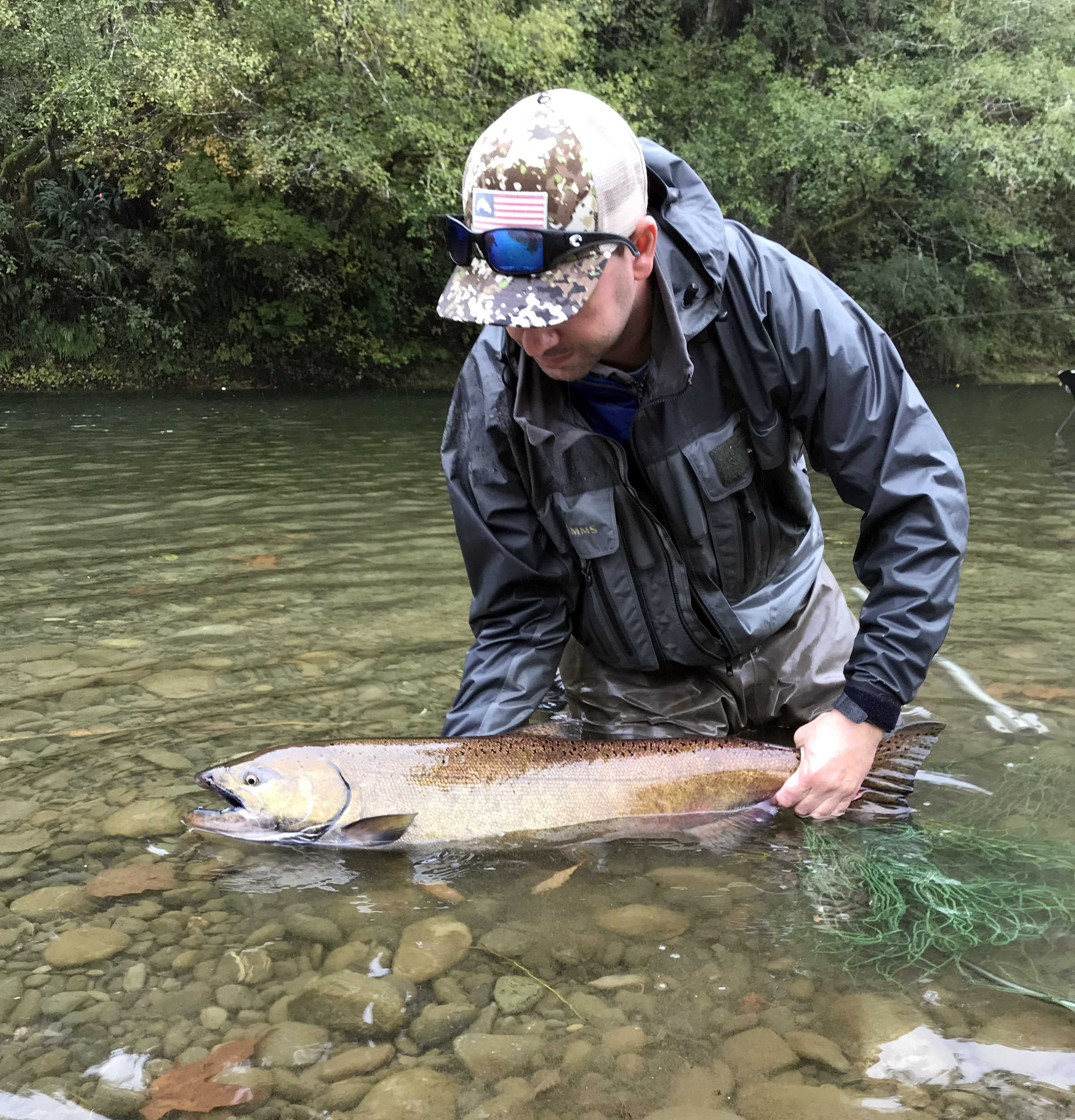 Releasing a Chinook Salmon on the Humptulips River.