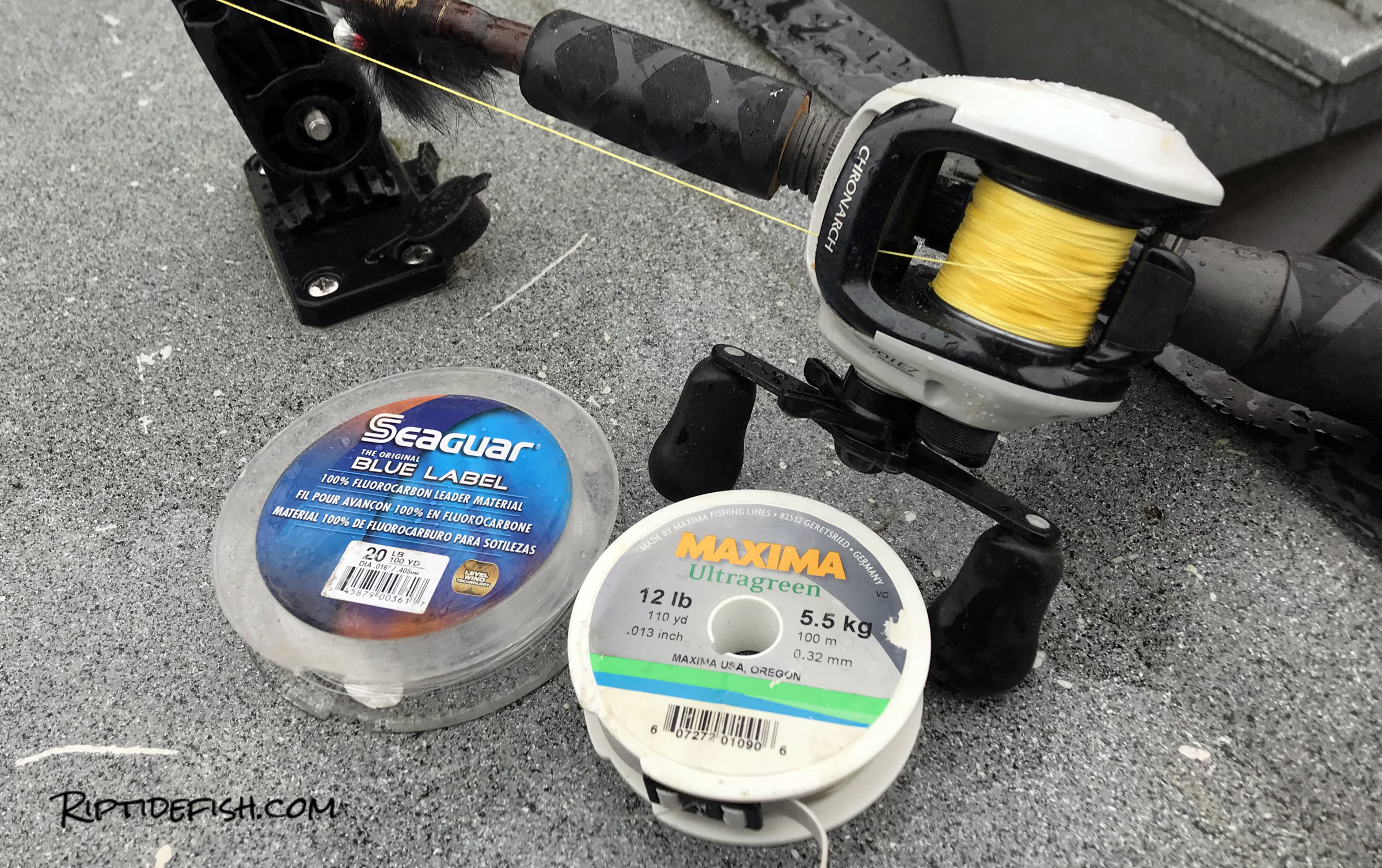 I love Seaguar fluorocarbon for leader but it is a bit expensive. Maxima Ultragreen is a great alternative.