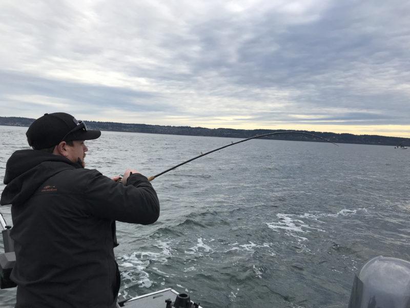 Seattle Blackmouth Fishing