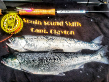 Fly Fishing Coho Salmon Saltwater
