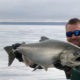 Chinook Salmon Catch and Release
