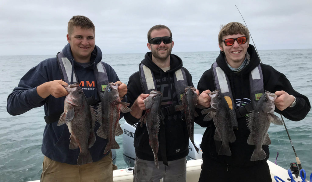 Fishing for Rockfish with Plastic Lures