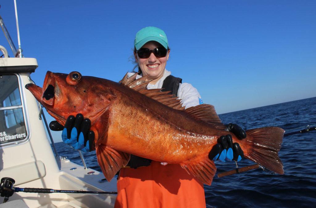 Boccacio Rockfish caught on Copper Pipe Jig Lure