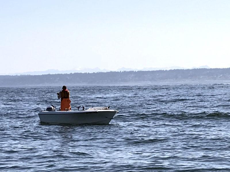Puget Sound Salmon Mooching