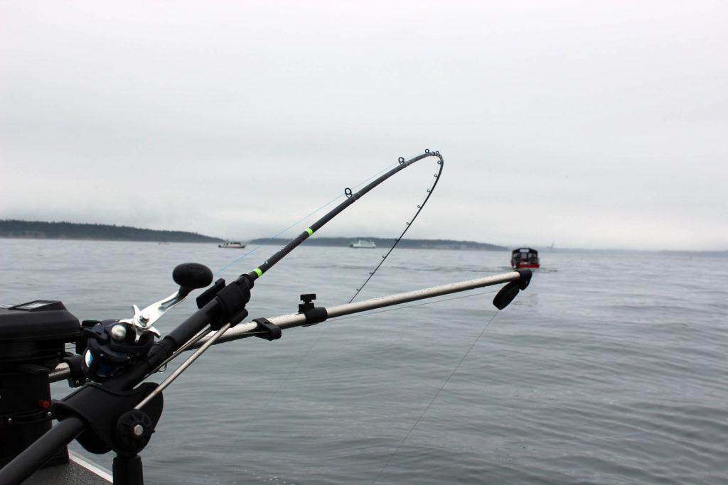 Trolling for Chinook Salmon at Mid Channel Bank