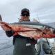 Westport Fishing Report