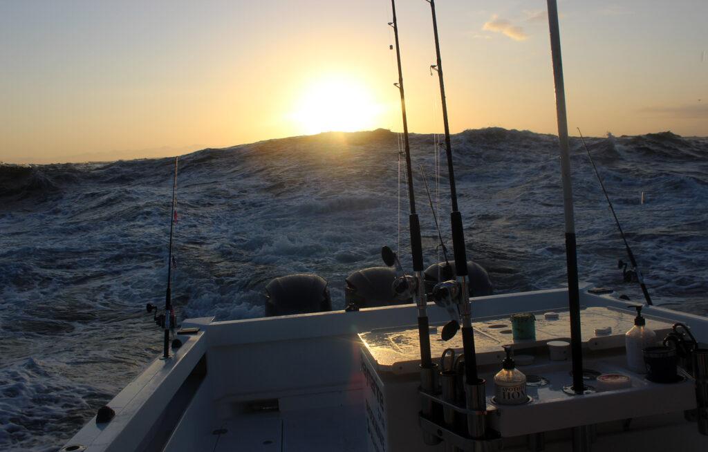 Westport Albacore Fishing