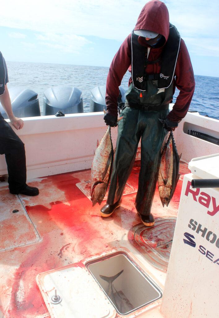 Albacore Tuna Fishing Report
