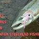 best lures for winter steelhead