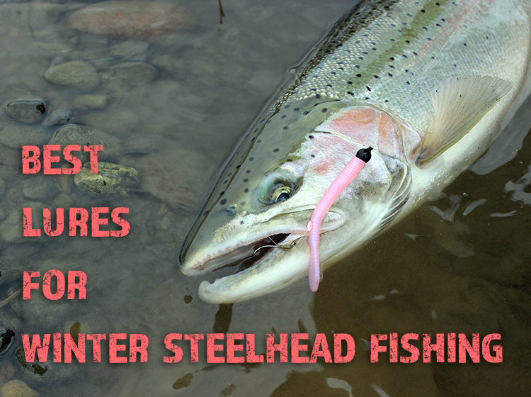 best lures for winter steelhead