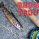 Brook Trout Fishing Washington