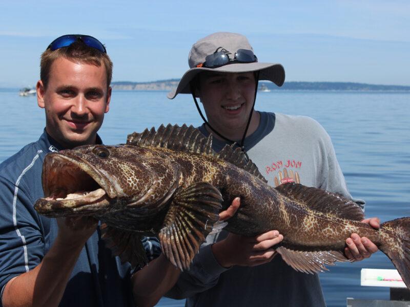 seattle lingcod fishing