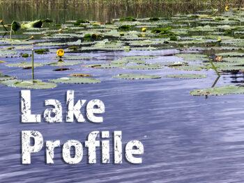 Larsen Lake Fishing Bellevue Washington