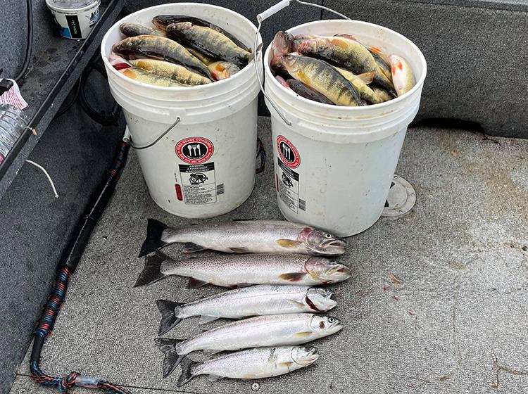 Lake Sammamish Trout and Perch Fishing